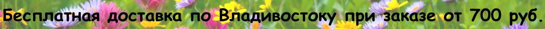 Бесплатная доставка по городу при заказе от 600 рублей